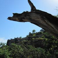 Kangra Fort 4/5 by Tripoto