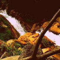 Shivpuri 5/6 by Tripoto