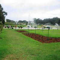 Brindavan Gardens 5/11 by Tripoto