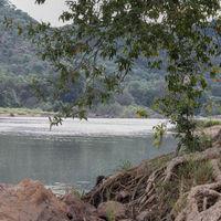 Bheemeshwari Adventure & Nature Camp 3/6 by Tripoto