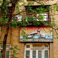 PDT Mumbai 4/10 by Tripoto