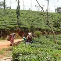 Adventure Karnataka 5/5 by Tripoto