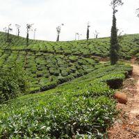 Adventure Karnataka 3/5 by Tripoto