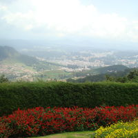 Doddabetta Peak 5/17 by Tripoto