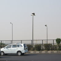 Delhi-Gurgaon Expressway 2/4 by Tripoto