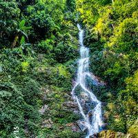 Rimbi Waterfalls 2/8 by Tripoto