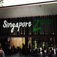 Singapore Zoo 2/29 by Tripoto