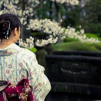 Sensō-ji 2/6 by Tripoto