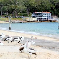 Port Stephens Visitor Information Centre 2/9 by Tripoto