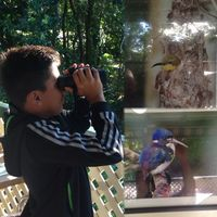 Daintree Rainforest 2/4 by Tripoto