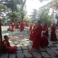 Dalai Lama Temple 5/5 by Tripoto