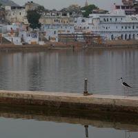 Pushkar Lake 5/40 by Tripoto