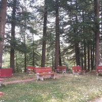 Sidh Baba Ka Mandir 4/6 by Tripoto