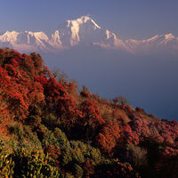 Annapurna Base Camp 3/4 by Tripoto
