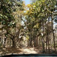 Kalagarh Tiger Reserve 2/4 by Tripoto