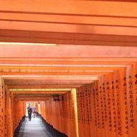 Fushimi Inari Taisha 5/5 by Tripoto