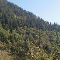 Kheerganga Camping 4/20 by Tripoto