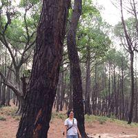 Meru Travel Blogger