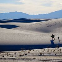 White Sands National Monument 4/5 by Tripoto