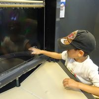 Explora Science Center and Children's Museum of Albuquerque 4/9 by Tripoto