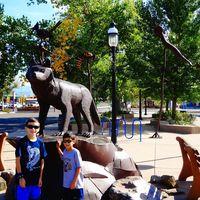 iT'Z Albuquerque 2/14 by Tripoto