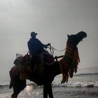 Puri Sea Beach 3/8 by Tripoto