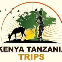 Kenya Tanzania Trips Travel Blogger