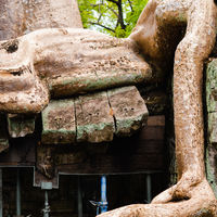 Ta Prohm 3/4 by Tripoto