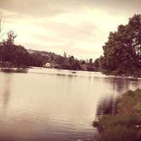 Kodaikanal Lake 5/21 by Tripoto