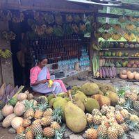 Guwahati Shillong Road 2/3 by Tripoto
