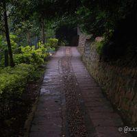 Kurumba Village Resort 2/15 by Tripoto
