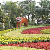 Nong Nooch Village and Tropical Garden Pattaya Thailand 3/7 by Tripoto