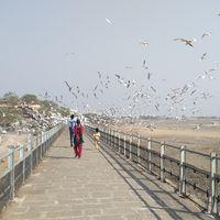 Pradhyuman Park 2/3 by Tripoto