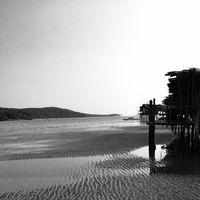 Tsunami Island 2/5 by Tripoto