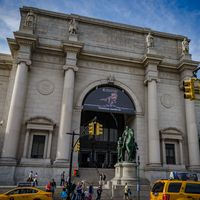 American Museum of Natural History 4/5 by Tripoto