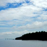 Bako National Park Kuching Sarawak Malaysia 2/2 by Tripoto