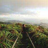Oahu 2/2 by Tripoto