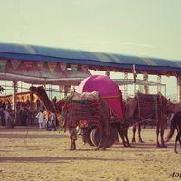 Pushkar Fair Ground 3/10 by Tripoto
