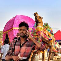Pushkar Fair Ground 4/10 by Tripoto