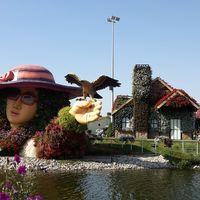 Dubai Miracle Garden - Arjan-Dubailand - Dubai - United Arab Emirates 3/19 by Tripoto