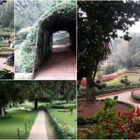 Botanical Gardens 4/16 by Tripoto