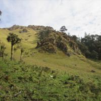 Sandakphu Trekkers Hut 2/2 by Tripoto