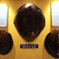 Samudrika Marine Museum 3/6 by Tripoto