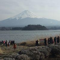 Mount Fuji 3/8 by Tripoto