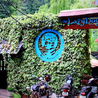 The lazy dog lounge 4/4 by Tripoto