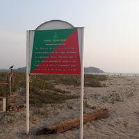 Morjim Beach 2/5 by Tripoto