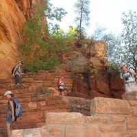 Zion National Park 2/7 by Tripoto