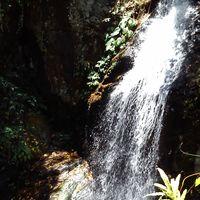 Mambukal Mountain Resort 4/8 by Tripoto