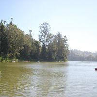 Ooty Lake 4/11 by Tripoto