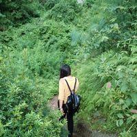 Chhoie Waterfall 4/13 by Tripoto